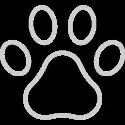 """Icona colore grigio di un """"impronta di una zampa"""" che raffigura il che gli animali sono ben accetti"""